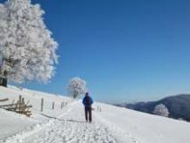 Hotel HRS Deals Wallerfangen: Winterzauber in Wallerfangen – 59 Euro
