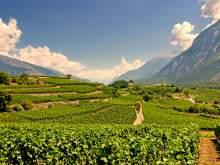 Hotelangebot Wallis: Entdecken Sie die Schweizer Weingärten – 99 Euro